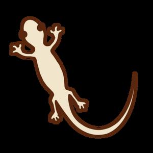 Illustrain08_reptiles07